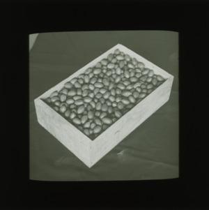 Box of pecans, circa 1910