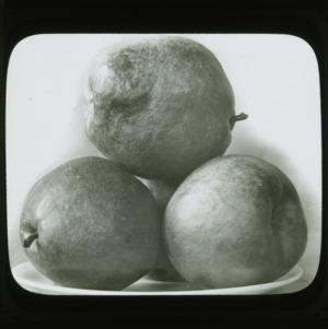 Pears, circa 1900