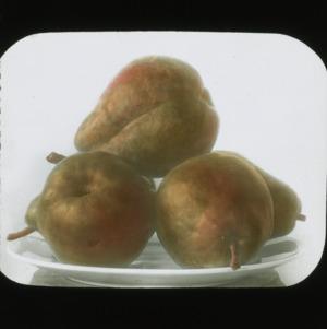 Bartlett pears, colorized, circa 1910