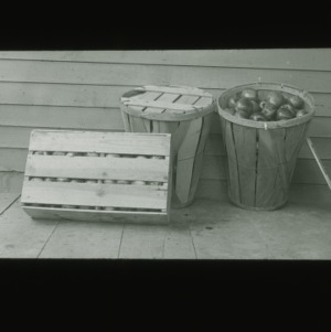 Crate and baskets of apples, circa 1910