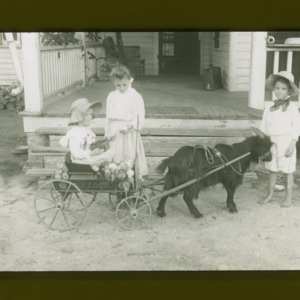 Children with fruit and vegetables in wagon, drawn by goat, circa 1910