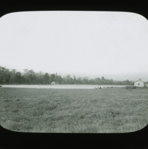 Lettuce field on Hackburn & Willett farm, circa 1900