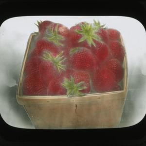 Basket of strawberries, circa 1910