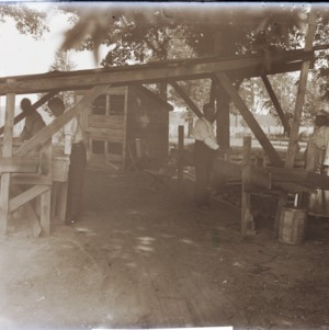 Cantaloupe packing shed in Ridgeway, NC, 1914