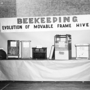 Farm and Home: Bee Keeping Exhibit