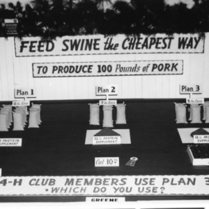Swine feeding exhibit at NC State Fair