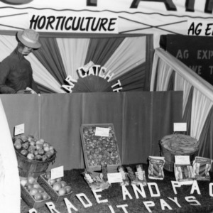 Horticulture exhibit at NC State Fair