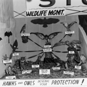 Wildlife Management exhibit at NC State Fair