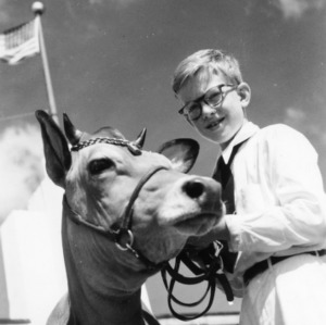 Boy and cow at NC State Fair