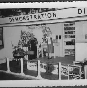 Home demonstration booths state fair