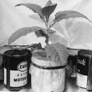 Greenhouse and Lab Experiment Equipment