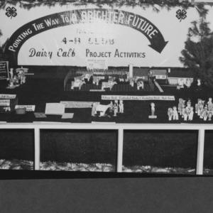 N. C. State Fair: 4-H Booths