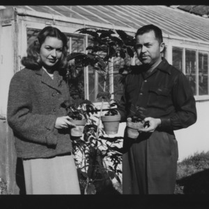 "Coffee tree at horticulture green house, Miss ""Penny"" McCrory and Mr. Vann"