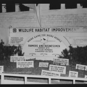 NC State Fair, October 1954: 1954 State Fair 4-H