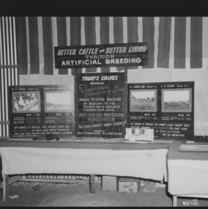 Dairy exhibit in NC State Fair dairy barn
