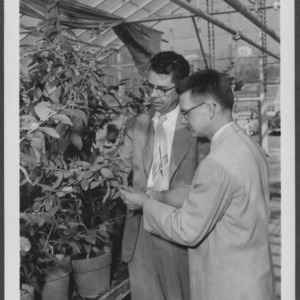 Dr. Clayton and Dr. Morrow in greenhouse
