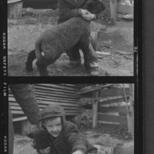 Child with lamb