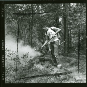 4-H Forestry Camp, 1956