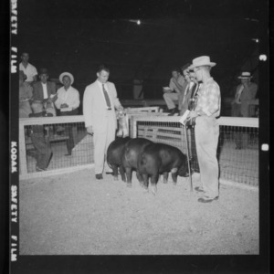 Grand Champion Individual and Pen; Second N. C Market Hog Show (Fair Grounds)