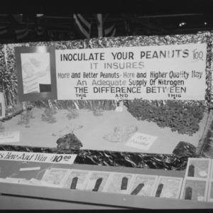 N. C. State Fair: Agronomy--corn, peanuts, tobacco, etc