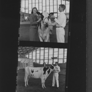N. C. State Fair: American dairy princess Shari Lewis with grand champion female Holstein