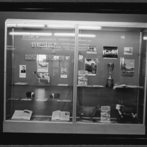 Library case display