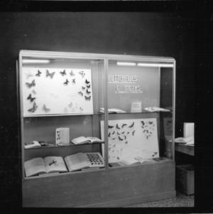 Agricultural Extension Conference Pinehurst, N.C.; Entomology exhibit