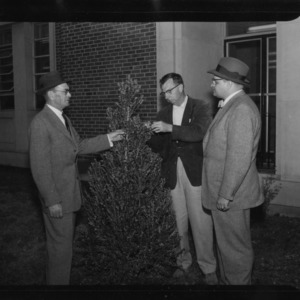 Group standing around new shrubbery in front of N. C. State College library