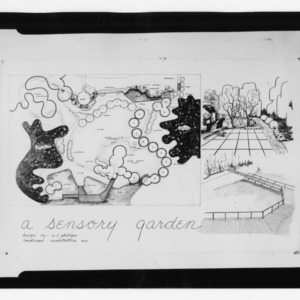 Blind Park's Sensory Garden landscape drawing