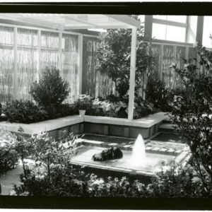 NC State Fair: Horticulture Exhibit