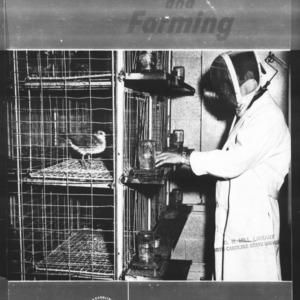 Research and Farming Vol. 22 No. 3