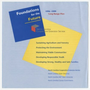 Foundations for the Future - 1996-1999 Long Range Plan