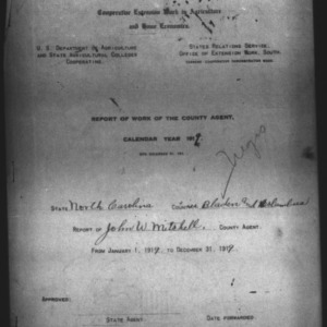 African American Report of Work of the County Agent, Bladen County, NC
