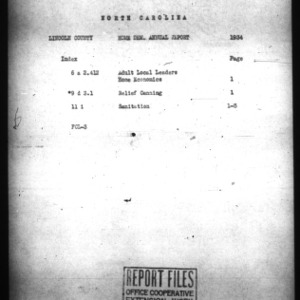 Annual Narrative Report for Lincoln County, NC