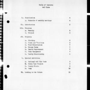 4-H Club Annual Report