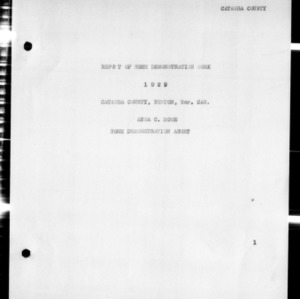 Annual Narrative Report of Home Demonstration Work, Catawba County, NC, 1929