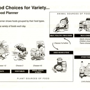 Food choices for variety ... a food planner (Expanded Food and Nutrition Education Program 100-180145)