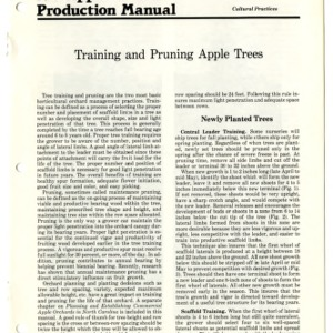 N.C. apple production manual: training and pruning apple trees (Agricultural Extension Publication 307)