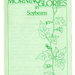 Identification and management of annual morning glories in soybeans (Agricultural Extension Publication 326)