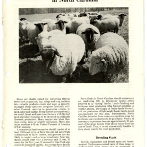 Commercial sheep production in North Carolina (Agricultural Extension Publication 339)