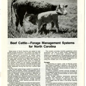 Beef cattle -- forage management systems for North Carolina: sandhills and sandy soils of the Coastal Plain (Agricultural Extension Publication 342-4)