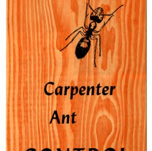 Carpenter ant control (Extension Folder No. 224)