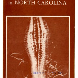 Experimental nematode advisory service for certain crops in North Carolina: nematodes attacking root tip (Extension Folder No. 275, Revised) (Replacing Extension Folder 268, 271)