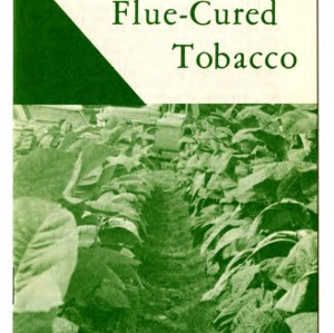Nitrogen fertilization of flue-cured tobacco: nitrogen deficiency, correct amount (Extension Folder No. 279)