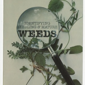Identifying seedling and mature weeds (AG-208, Reprint) (Bulletin No. 461)