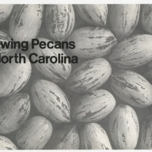Growing pecans in North Carolina (Agricultural Extension Publication 081, Reprint)