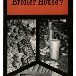 Which feeder for your broiler house? (Extension Folder 160)
