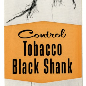 Control tobacco black shank (Extension Folder 161)