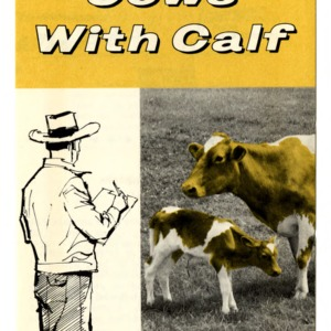The herdsman's role in getting cows with calf (Extension Folder 190)