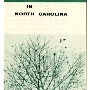 Fertilization of apple trees in North Carolina (Folder 195)